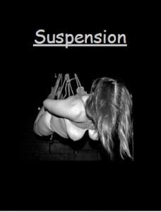 Suspension Ebook